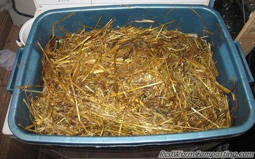 50 Cocoon Challenge - Straw