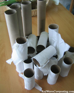 Cardboard Rolls - Perfect for the Bin!