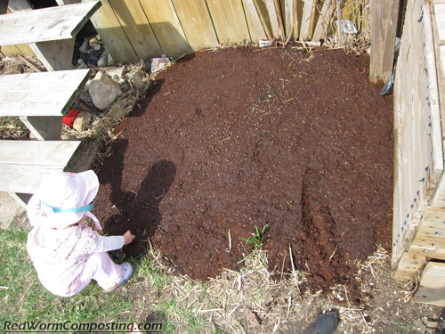 Coffee Grounds Added To Garden Bed