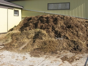 When Is Manure Ready For Vermicomposting Red Worm Composting