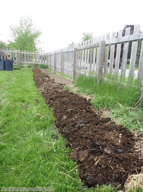 vermicomposting trench heaped up with manure and compost