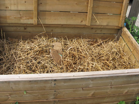 Preparing the winter worm bin