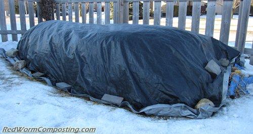 Winter Worm Windrow