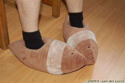 Worm Slippers