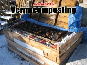 extreme-vermicomposting